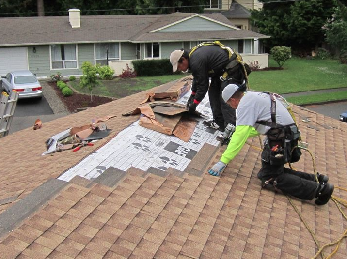 Roof Repair And Replacement Early Warning Signs