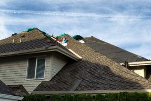 roofer Panthersville