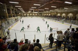 Duluth sports
